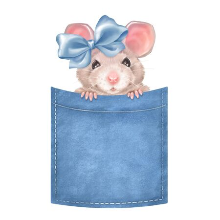 Cute mouse on pocket. Isolated on white background