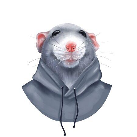 Cute rat isolated on white background. Digital illustration