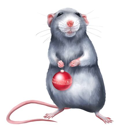 Cute rat holding a Christmas ball. Isolated on white