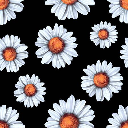 Floral pattern. Seamless background with white daisy flowers on black