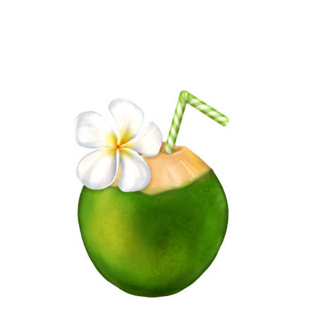 Coconut cocktail illustration isolated on a white. Fangipani flower.