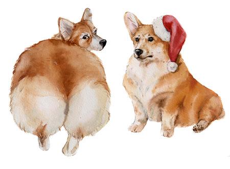 watercolor pretty corgi dog set Zdjęcie Seryjne