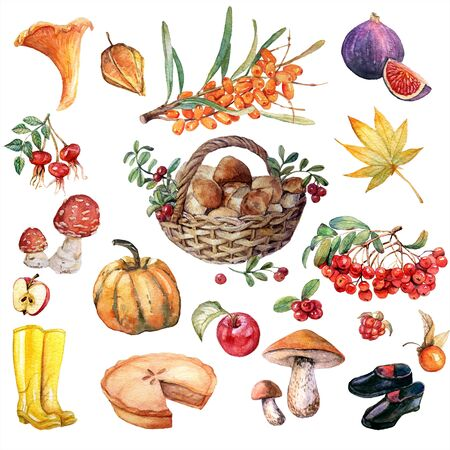 Grande insieme di autunno dell'acquerello Archivio Fotografico - 85314945