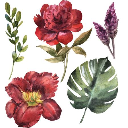 Watercolor maroon flower set Archivio Fotografico - 109202693