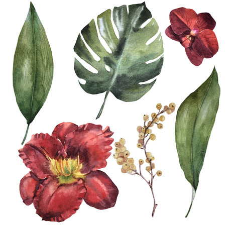 Watercolor maroon flower set Archivio Fotografico - 109202695