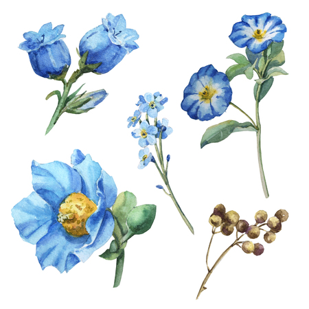 Watercolor blue flower set with leaves, iris, anemone, branch