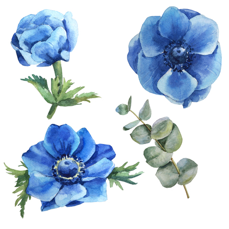 Watercolor blue flower set with leaves, iris, anemone, branch Archivio Fotografico - 109202739