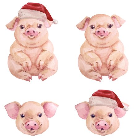 Watercolor pig christmas new year set Chinese symbol Archivio Fotografico - 109202748