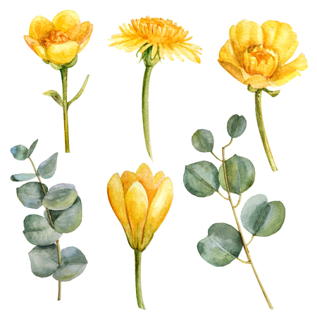 Watercolor yellow summer flower set with branch and leaves Zdjęcie Seryjne
