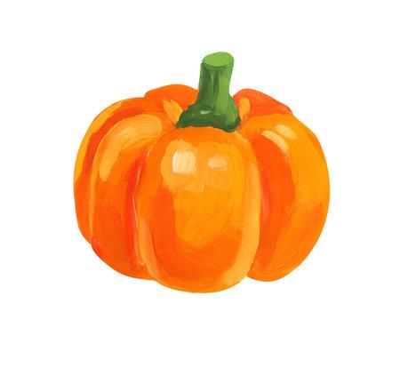Orange pumpkin. Hand drawn acrylic or gouache illustration on white background 版權商用圖片