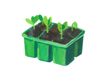 sprout in a pot. Hand drawn acrylic or gouache illustration on white background 版權商用圖片