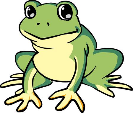 frosch: Frog Illustration