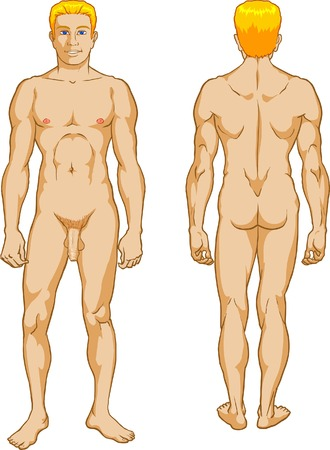 Male Nude Stock Vector - 4425561