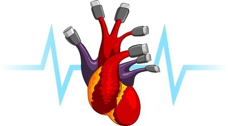 ventricle: Coraz�n Humano USB Plug Ilustraci�n simb�lica