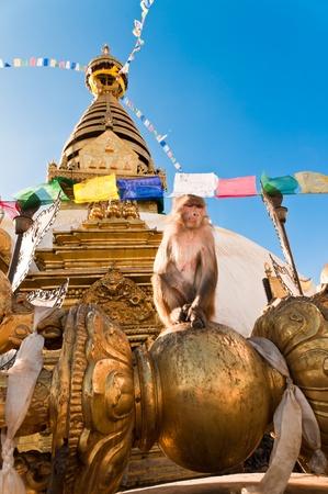 sacral: ancient monkey temple kathmandu nepal Stock Photo