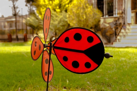 gusty: Sweet  ladybird weathercock in the green garden