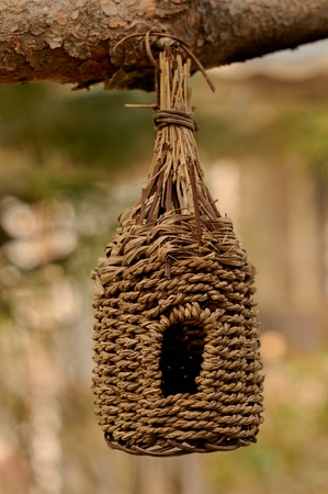 meshed: Organic knitting bird house at the brach of the tree