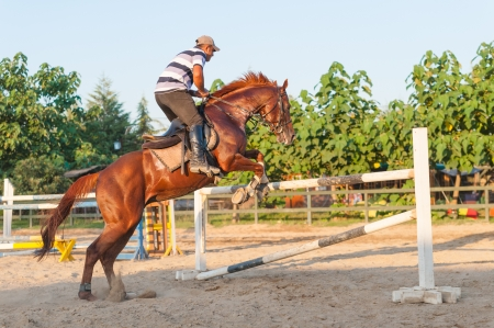 Horseback rider jumping over the bar photo