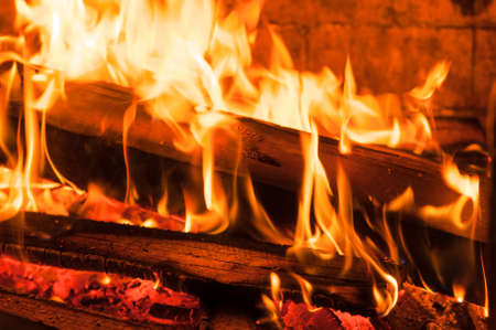 ember: Burning woods ember in fireplace