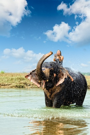 Elephant splashing with water while taking a bath in Chitwan National park, Nepal