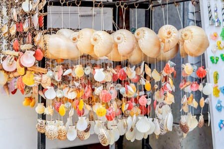 clam beds: seashells and starfish tied each other by string collection of various colorful ornament.