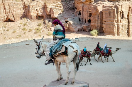 lessee: WADI MUSA, JORDAN - NOVEMBER 18, 2012:  Camels and mules for rent and arab lessee at ancient Petra city.Petra is historical and archaeological city and famous for its rock-cut architecture.