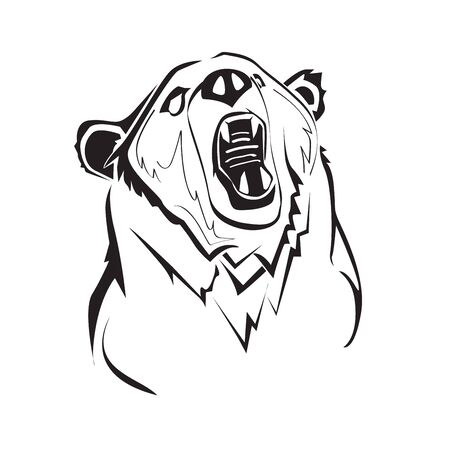 Engrave isolated vector bear graphic backgound