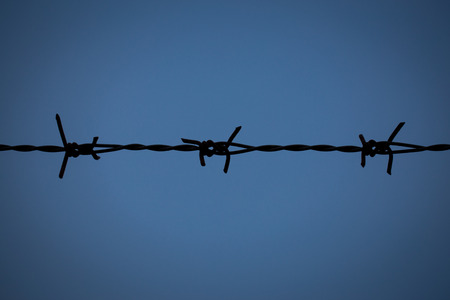 barbed wire fence: Rusted Barbed Wire, Barbed Wire Fence