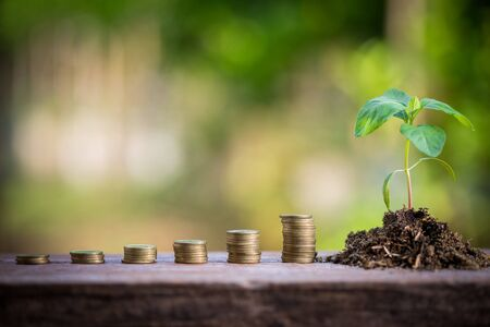fostering: green plant on the gold coins