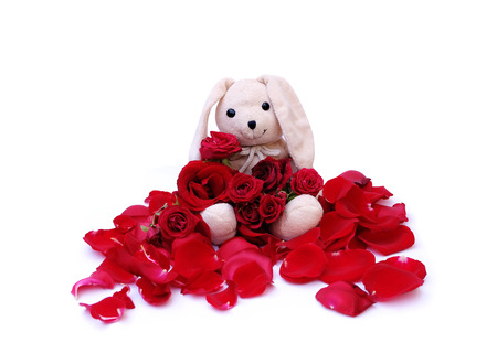 specific: Cute rabbit doll Holds a red roses bouquet for a special someone on a specific day. Stock Photo