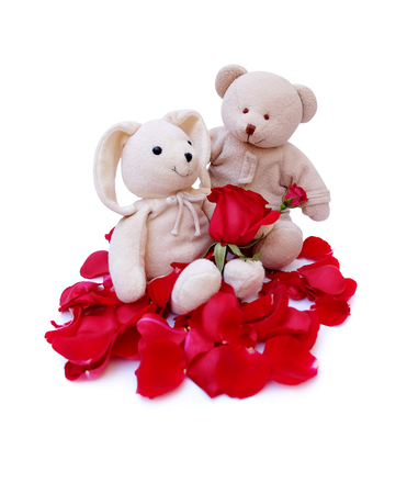Cute teddy bear Hold red roses For a special someone on a specific day.