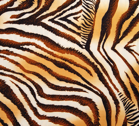 animal skin: pattern of a tiger skin, excellent wildlife background Stock Photo