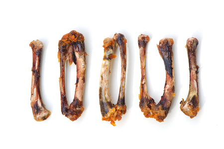 Chicken Bones isolate is on white background