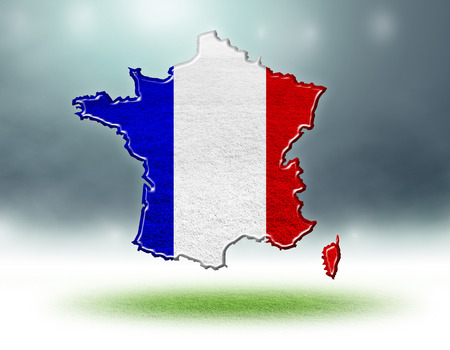 France map colour design with grass texture of soccer fields,3d render Stockfoto