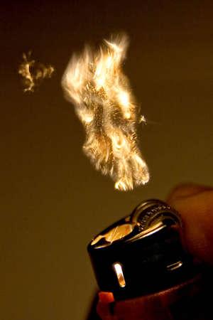 gas lighter: Lighter Flame Stock Photo