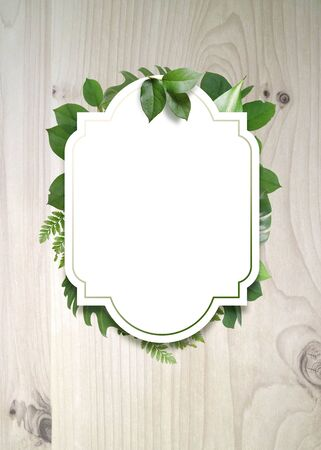 summer background, summer frame and object
