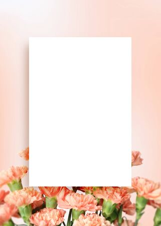 mothers day background, beautiful carnation frame