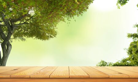 wooden table top with the nature landscape, spring green leafs as frame and free space for text