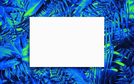 Fluorescent summer background, abstract summer frame & banner Stock Photo