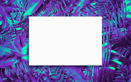 Fluorescent summer background, abstract summer frame & banner Foto de archivo