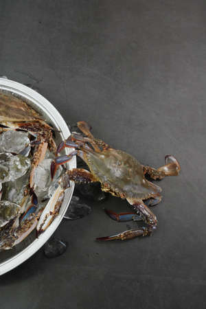 Fresh Crab isolated on white background,Seafood crab on ice 免版税图像