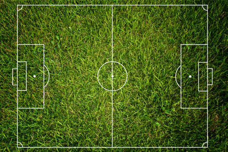 grass line: Soccer field texture with grass. Stock Photo