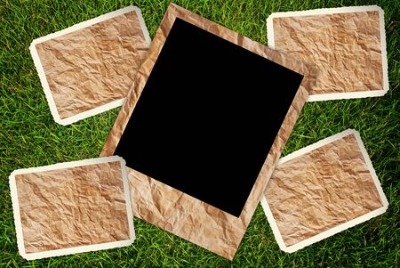 antique frame: Vintage photo frame on the grass texture background.