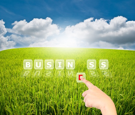 Hand pressing business word for business concept. Stock Photo - 10262623