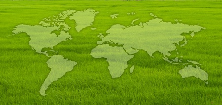 Green grass texture with world map. Stock Photo
