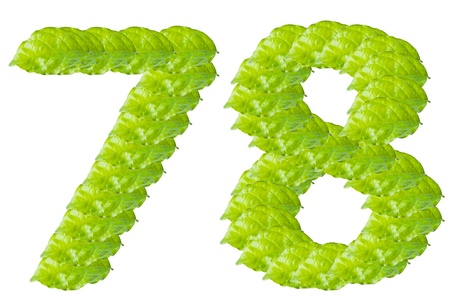 Green leaf number 7 and 8 alphabet character. photo