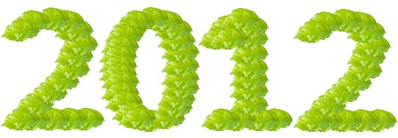 Green leaf number 2012 for new year. photo