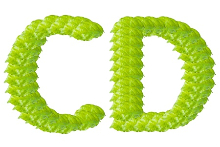 Green leaf C and D alphabet character. photo