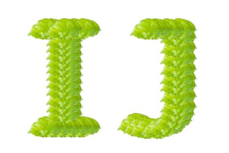 Green leaf I and J alphabet character. photo