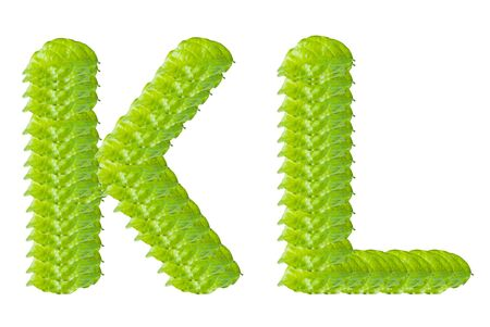 Green leaf K and L alphabet character. photo